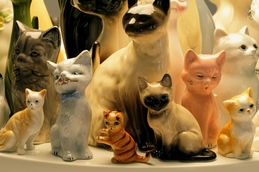 raft-cats-detail.edit1.h_copy.jpg