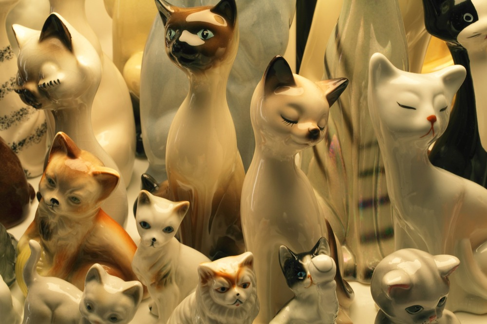 raft-cats-detail.edit1.i_copy.jpg