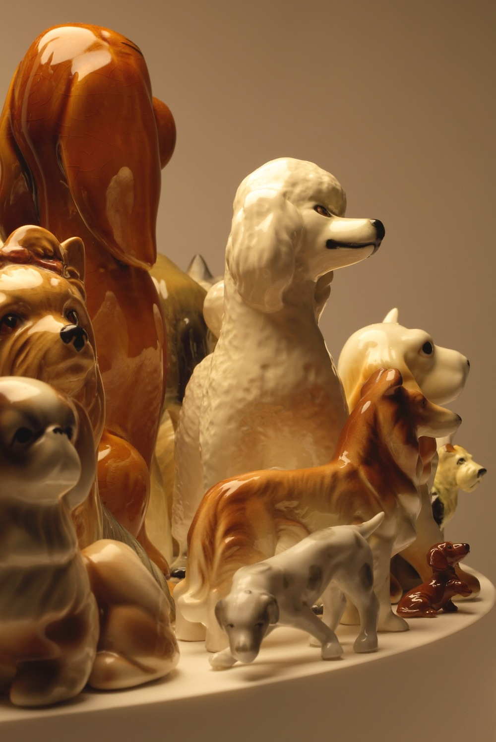 raft-dogs-60-detail8.jpg