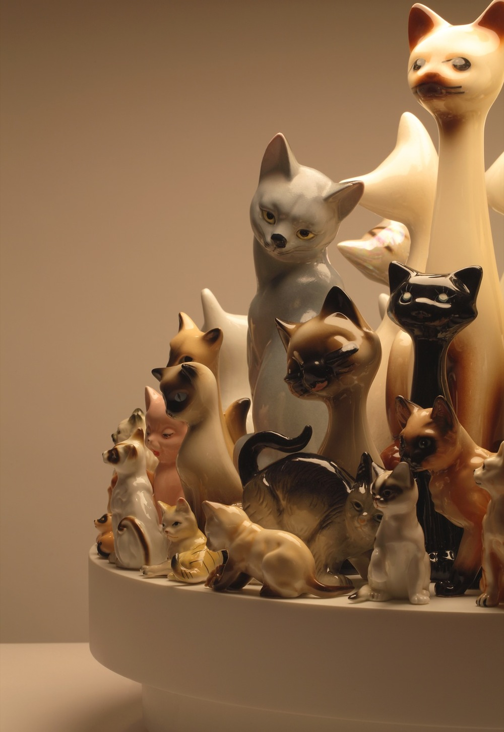 raft-cats-60detail1.jpg