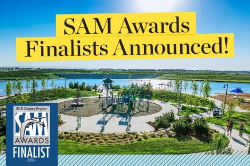 hopewell_blogimage_2016-SAMS-finalist_870x580_2017.03.10.jpg