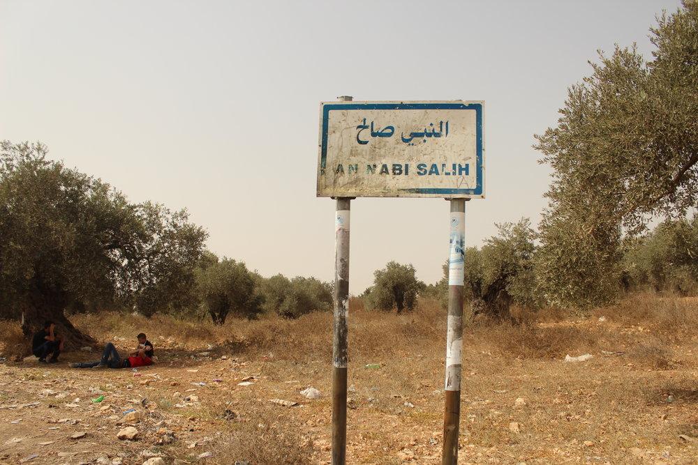 drenge u træ Nabi saleh skilt.JPG