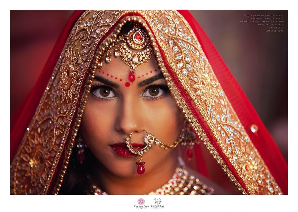 JLRoyal Rajasthan 4.jpg