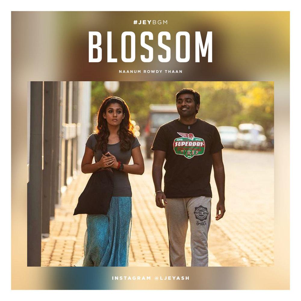 Naanum Rowdy Thaan - Blossom.jpg