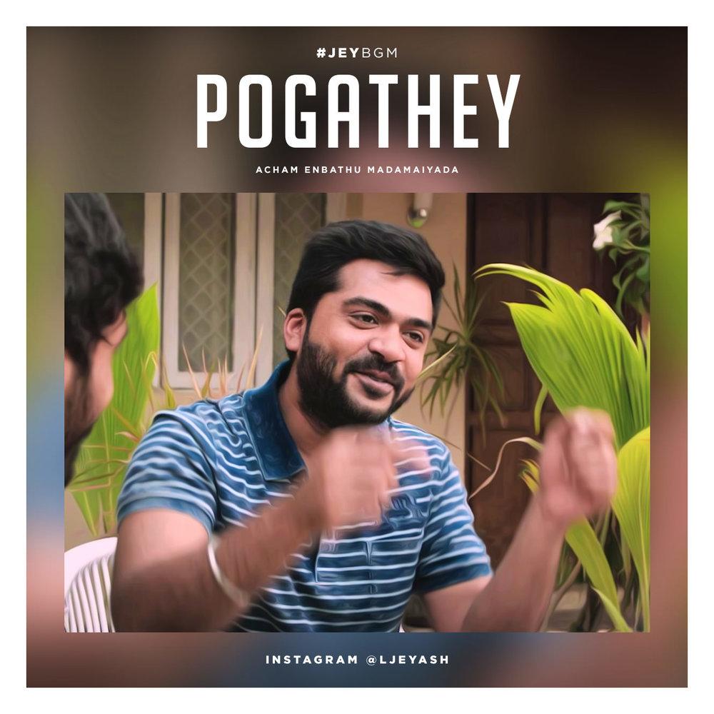 Pogathey - AYM.jpg