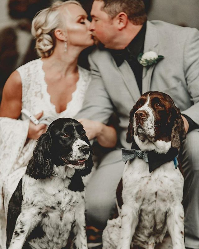 It's official! These two tied the knot and they are now a family of four! #furbabies🐾  #brideandgroom  #terranycephotography #truelove #cascadegarden #mrandmrs #marriedintherain