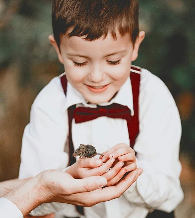 He was so proud to catch this little guys with his daddy so of course we grabbed a quick picture before releasing him back into the field. ♥️#ringbearer #tinymouse #terranycephotography #pnwweddingphotographer