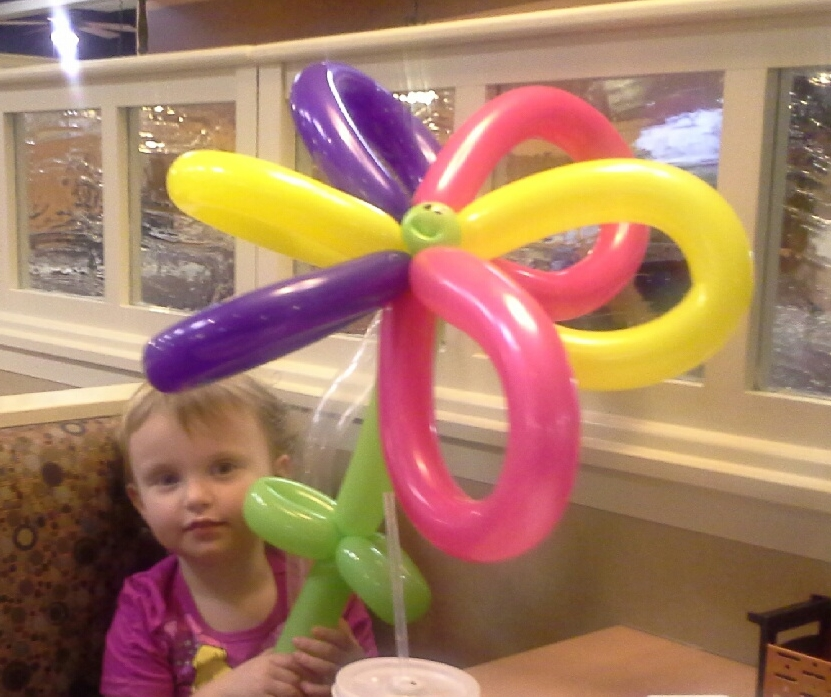 Balloon flower at IHOP