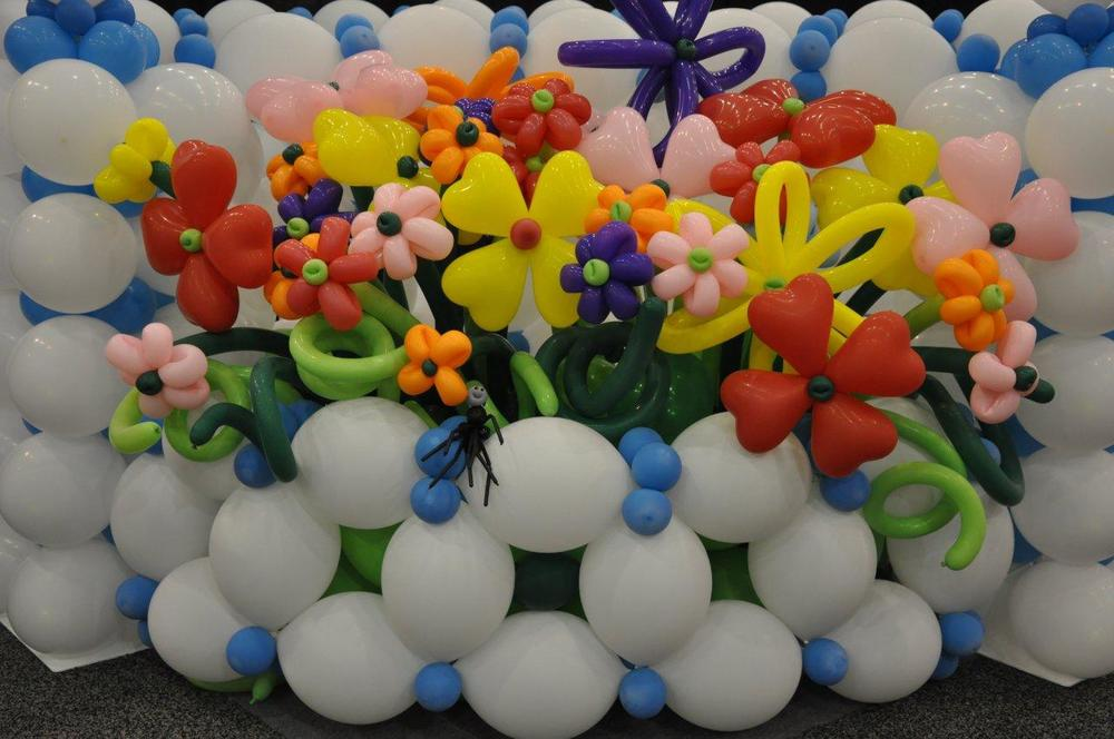 Balloon flower garden close up