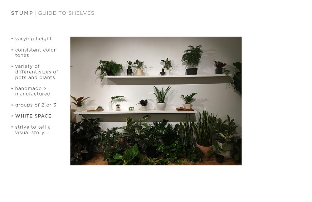 shelf guide2.png