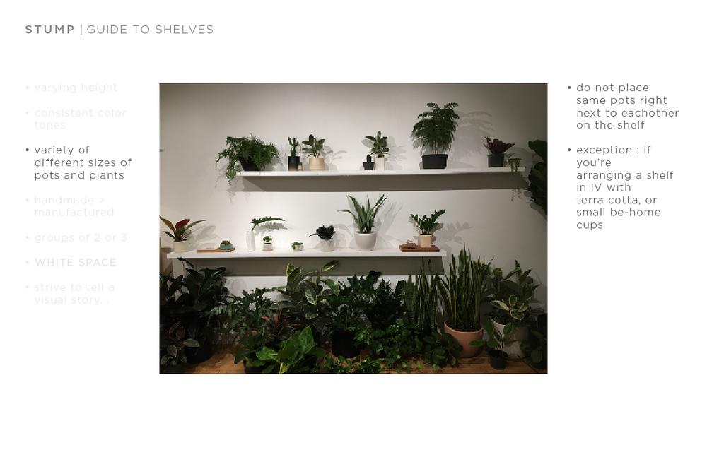 shelf guide5.png