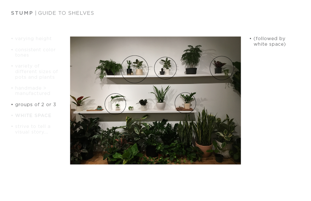 shelf guide7.png