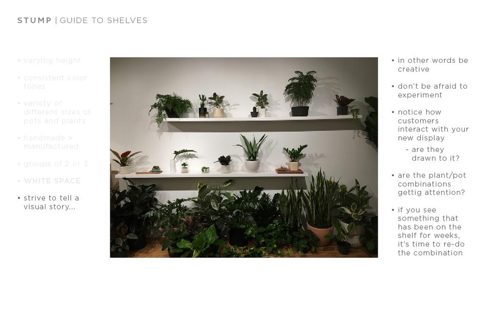 shelf guide9.png