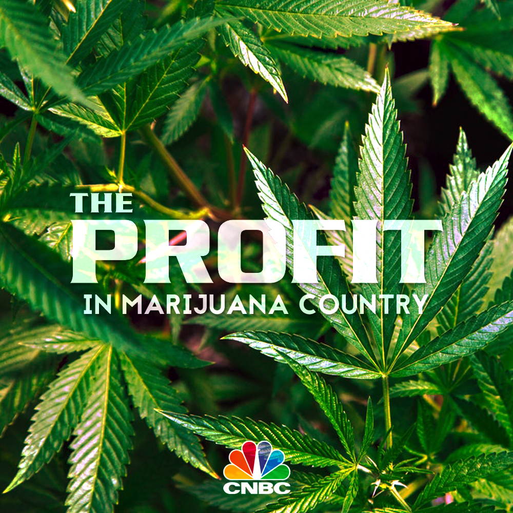 The Profit in Marijuana Country (CNBC)