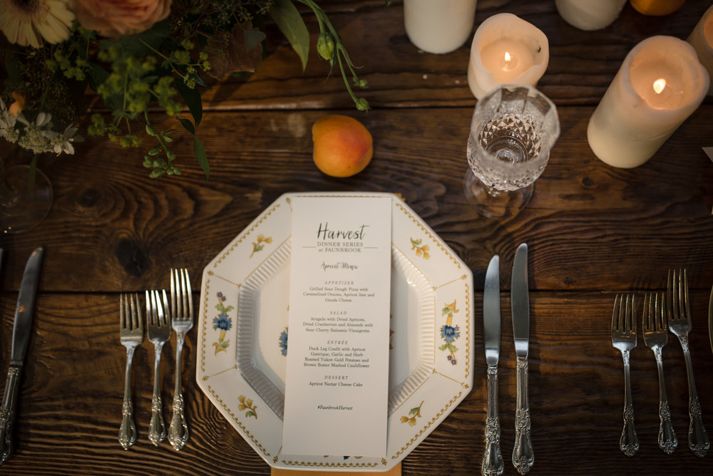 West-Chester-PA-Faunbrook-Harvest-Dinner-Series-Apricot-ChristieGreenPhotography-19.jpg