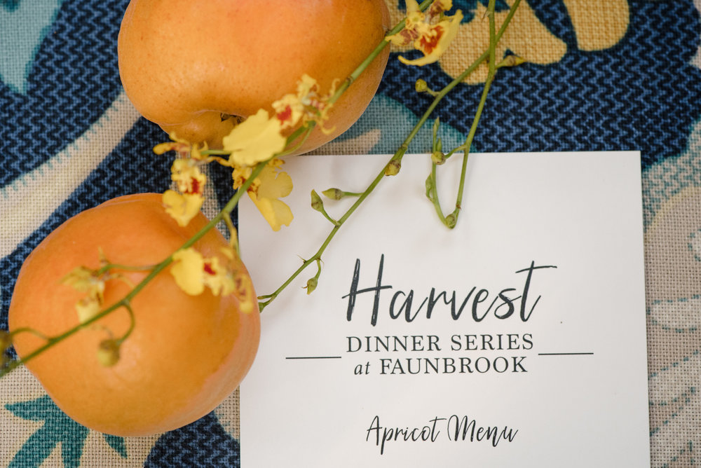 West-Chester-PA-Faunbrook-Harvest-Dinner-Series-Apricot-ChristieGreenPhotography-26.jpg