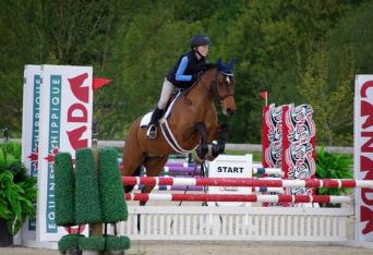 HAZE - 2002 Irish Sport HorseSOLD - WA, USA