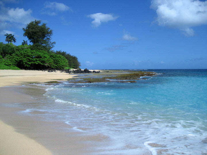 kaui-beach-photo.jpg