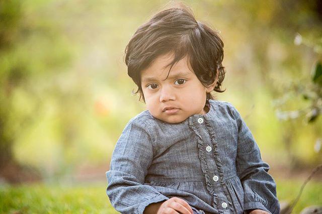 """What are you looking at?"" . . . #sharplitemedia #familyfirst #photoart #depthoffield #familyforever #photographylovers #babyphoto #babyphotographer #babyphotos #bayarea #siliconvalley #bayareaphotographer #babiesofinstagram #babiesofig"