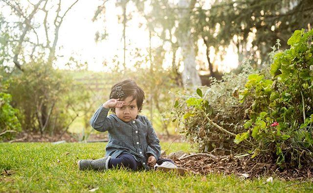 Cute salute. . . . #familyfirst #photoart #familyforever #photographylovers #sharplitemedia #babyphotographer #babyphoto #babysiliconvalley #toddlerlove #babylove #cutebabies