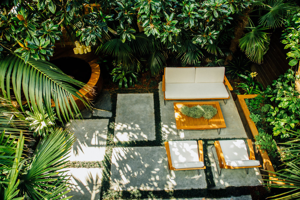 A Handsome Array Of Palms Transform This Small Mission District Garden Into  A Private Forest. Both Elegant And Grand, Nothing Boasts More Of Our  California ...