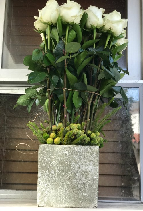 Polar Star White Long Stem Roses In A Concrete Vase Flowers By Yianni