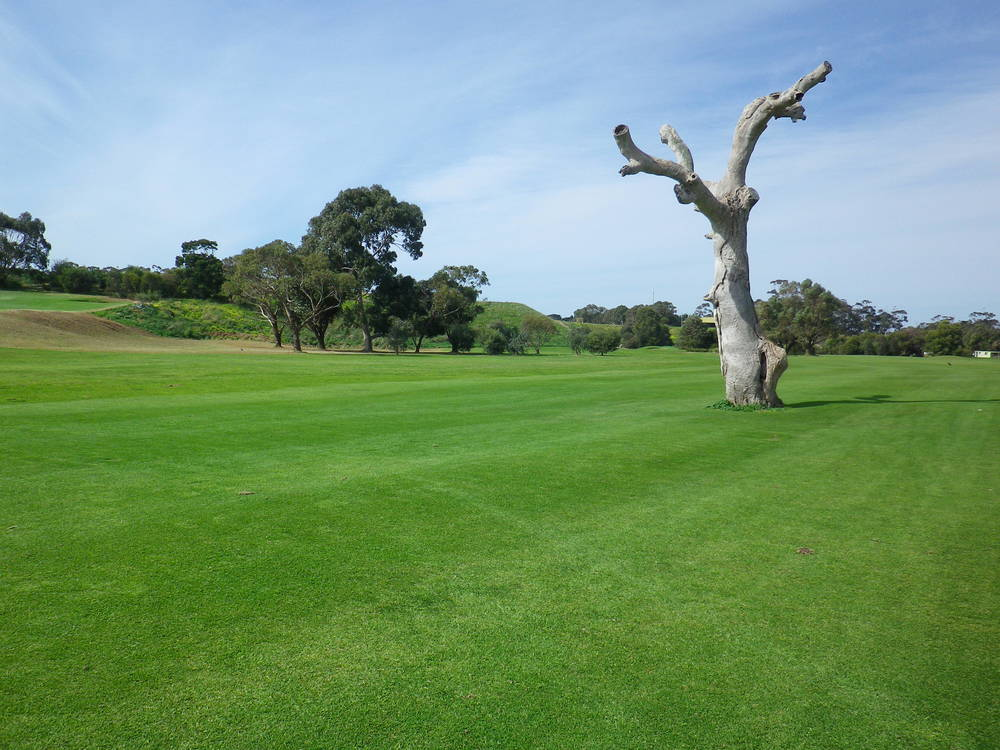 Werribee Park Golf Club_1.JPG