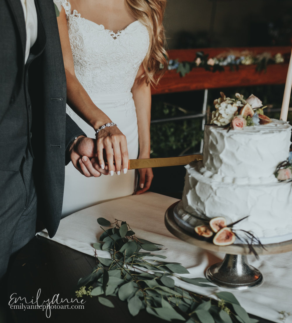beautiful gorgeous cake photography Nashville tn Emily Anne photo art connie cakes
