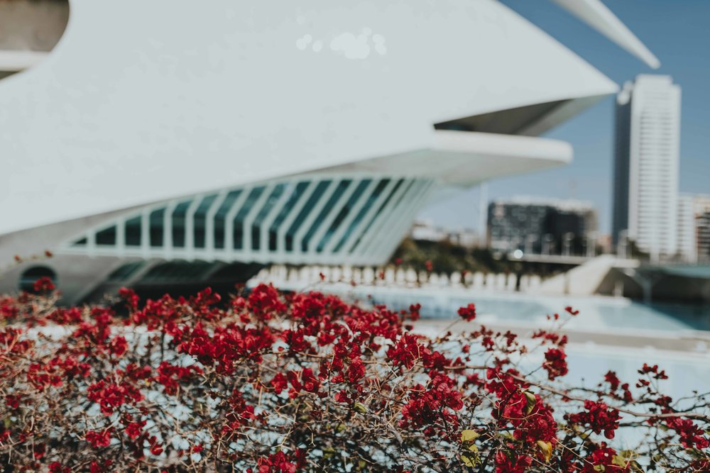 the best of valencia Spain tourism photographer details