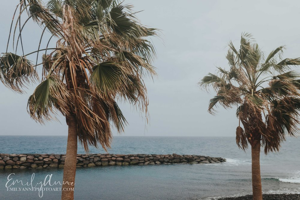 amazing vacation destination Europe Canary Islands tenerife by destination wedding photographer emily anne photo art