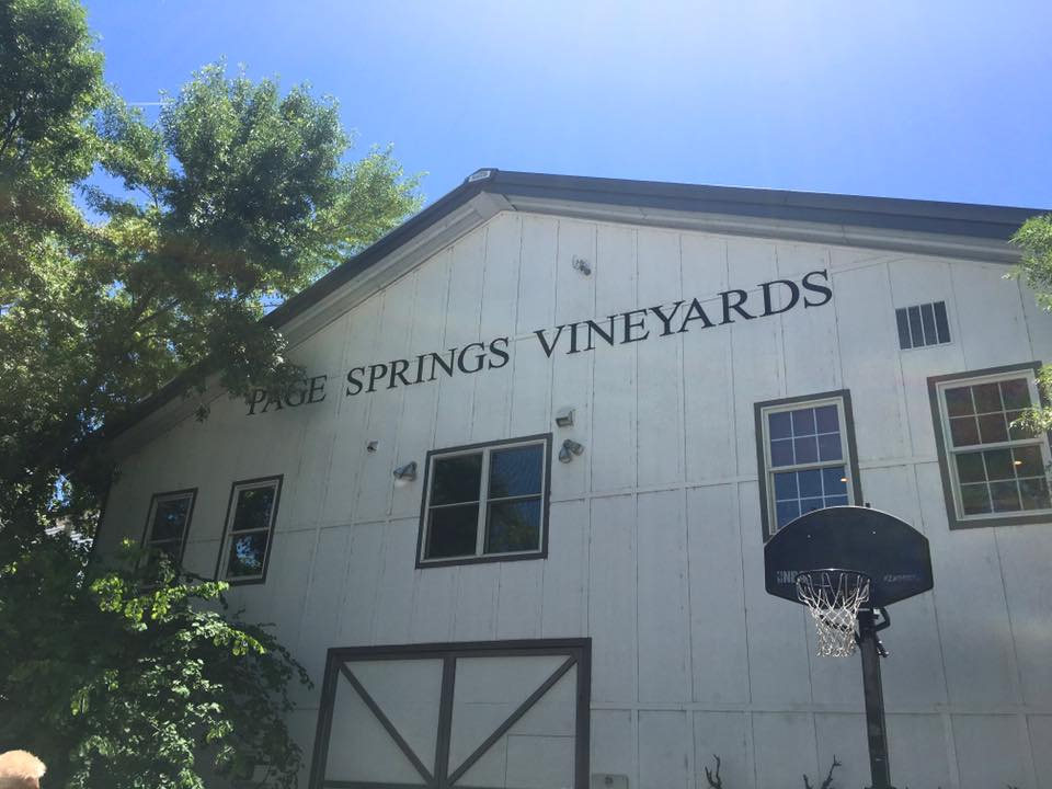 PSC Vineyard.jpg