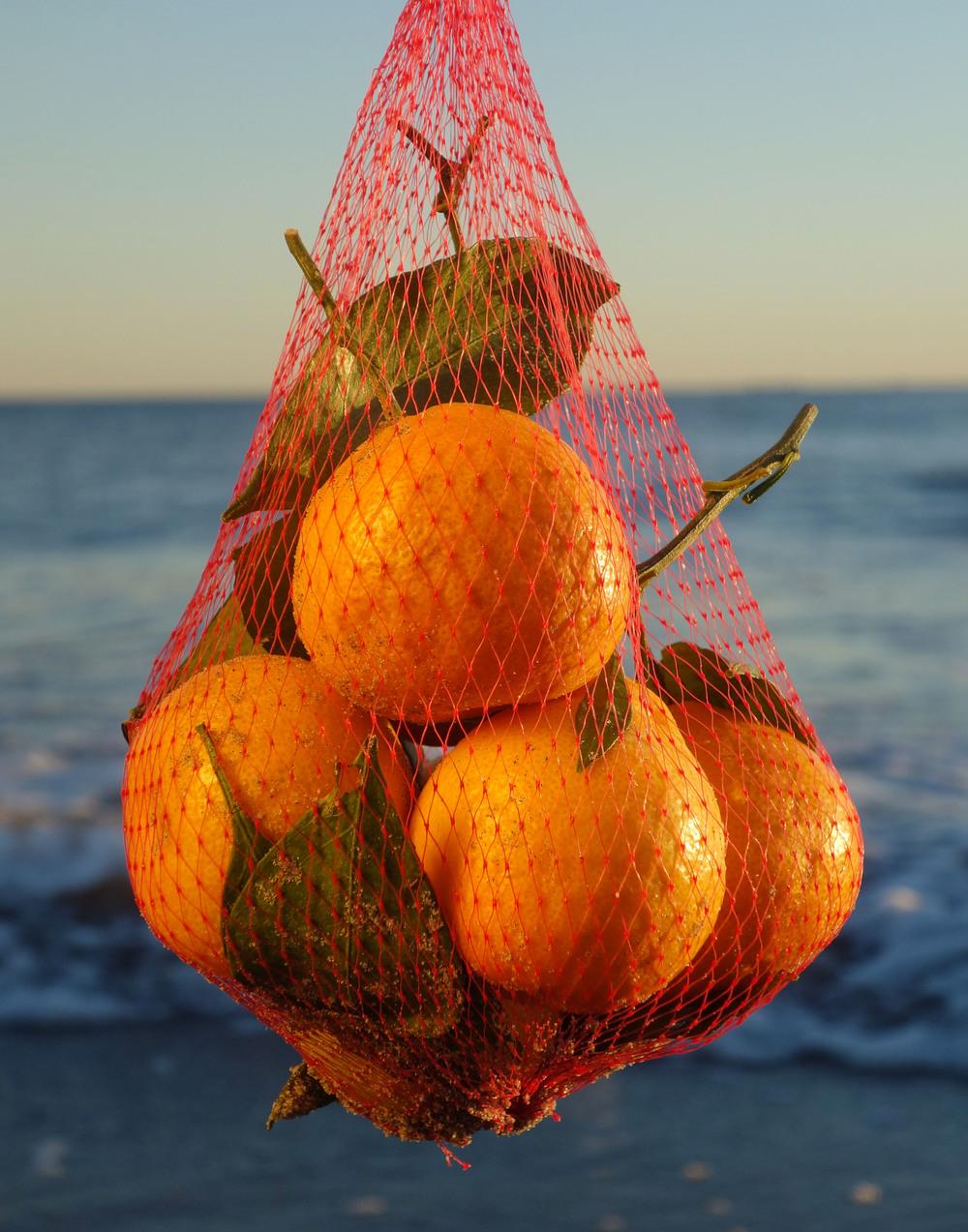 orangebeach.jpg