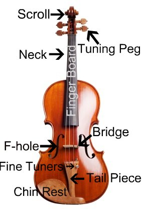 violin parts the violin rh the violin com Stradivarius Violin violin bow parts diagram