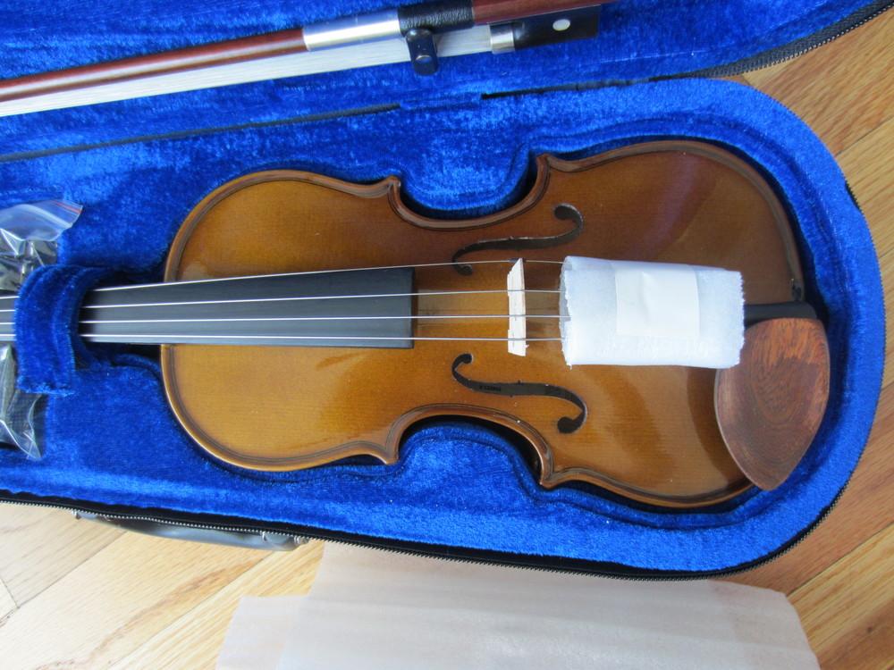 Stentor Violin in Case closeup