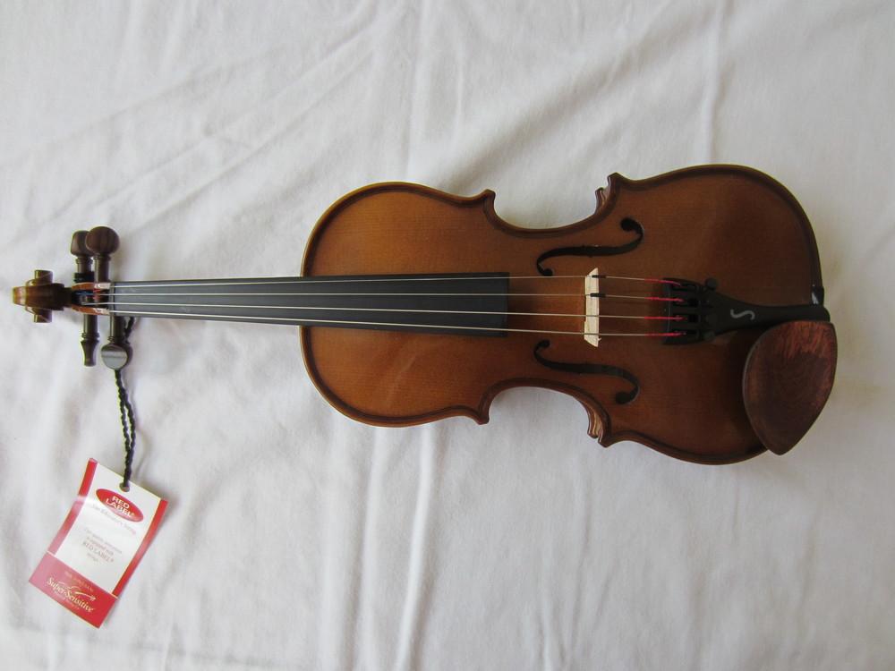 A good beginner violin