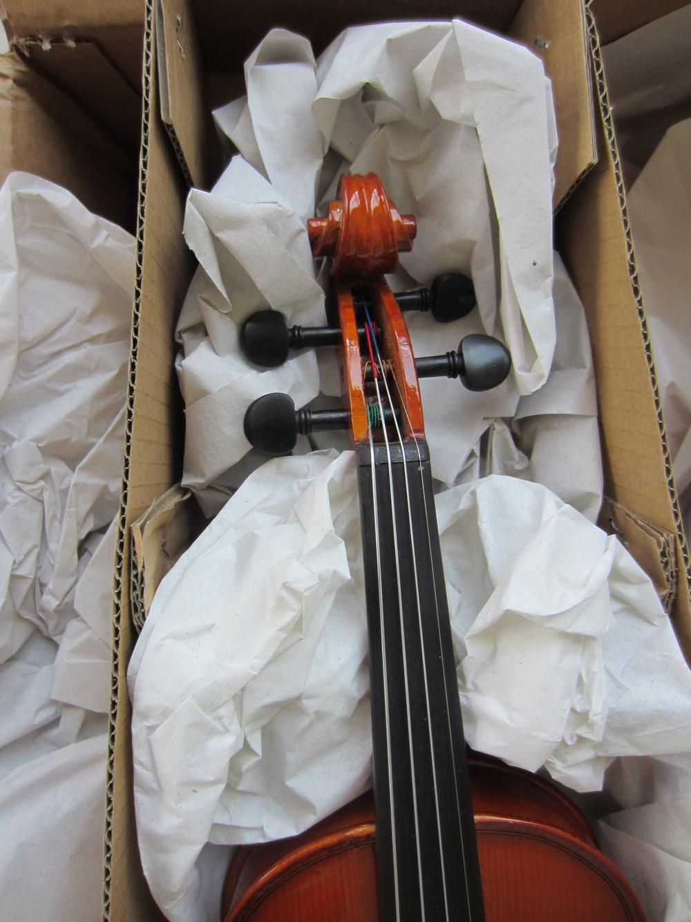 Franz Hoffman Amadeus Violin