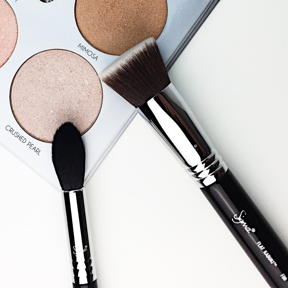 Marisa Robinson Beauty Blogger Sigma Most Wanted Brush Set Review