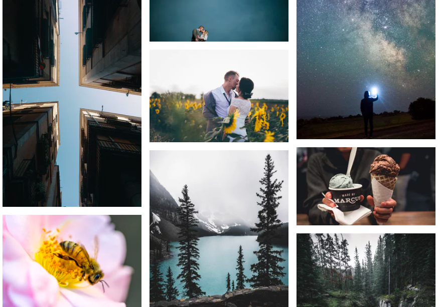 Unsplash Royalty Free Photos
