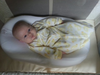 Baby Tayo cocoon