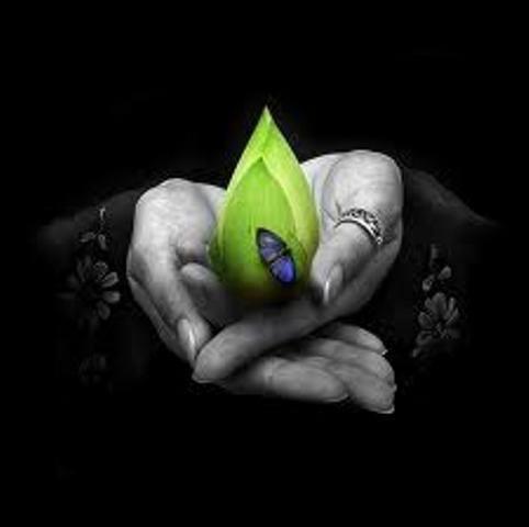 photo B&W hands green leaf