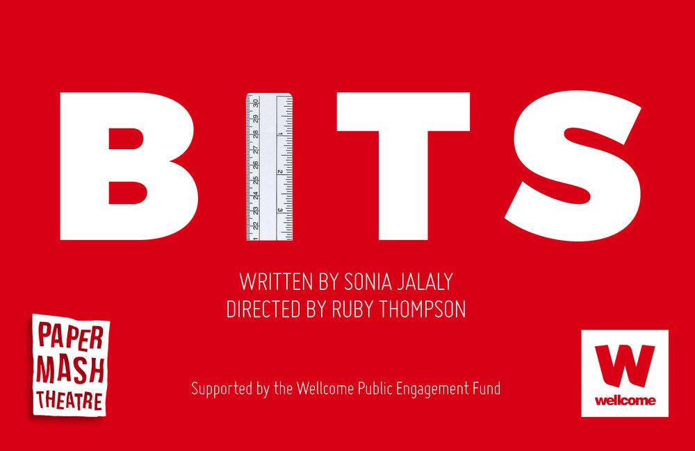 BITS logo draft 2.jpg