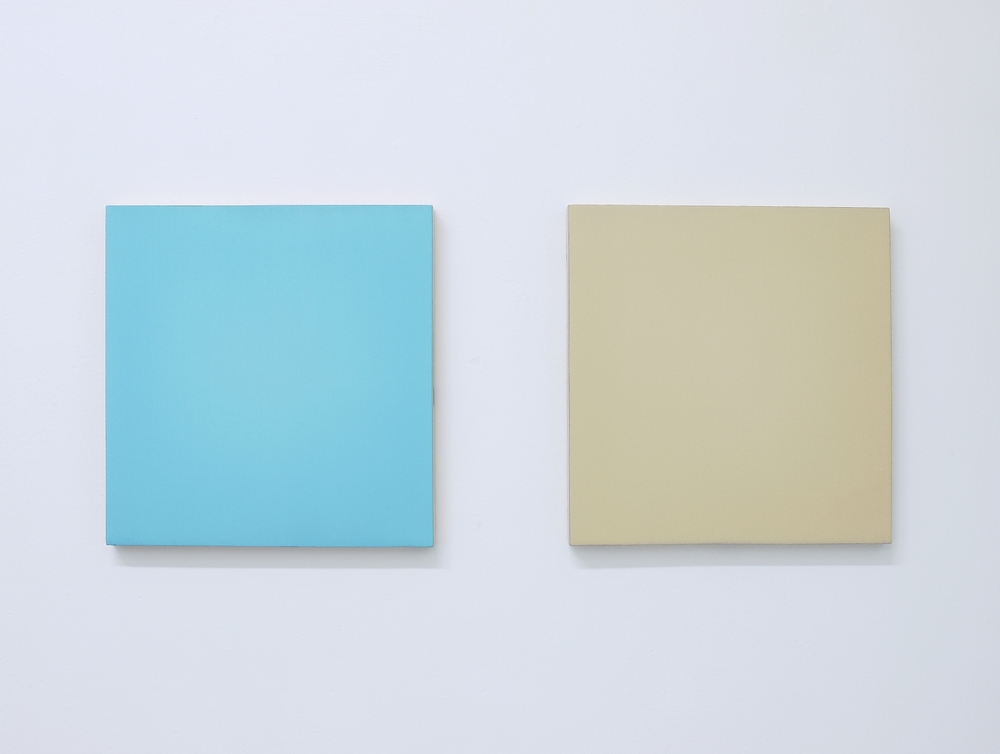Untitled, 2015, Oil on Two Boards, 30cm x 70cm (withsplit)
