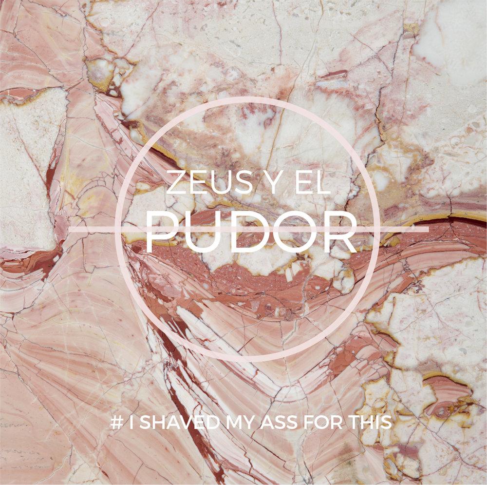 ZEUS Y EL PUDOR - 2016