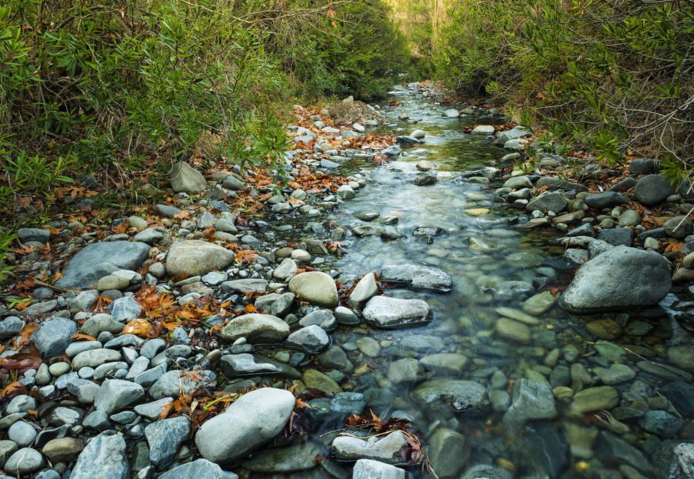 Pedieos River ( Nicosia),Cyprus