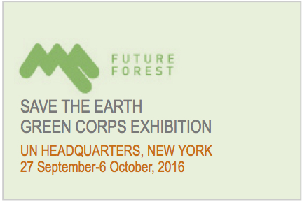 FF-UN NYC