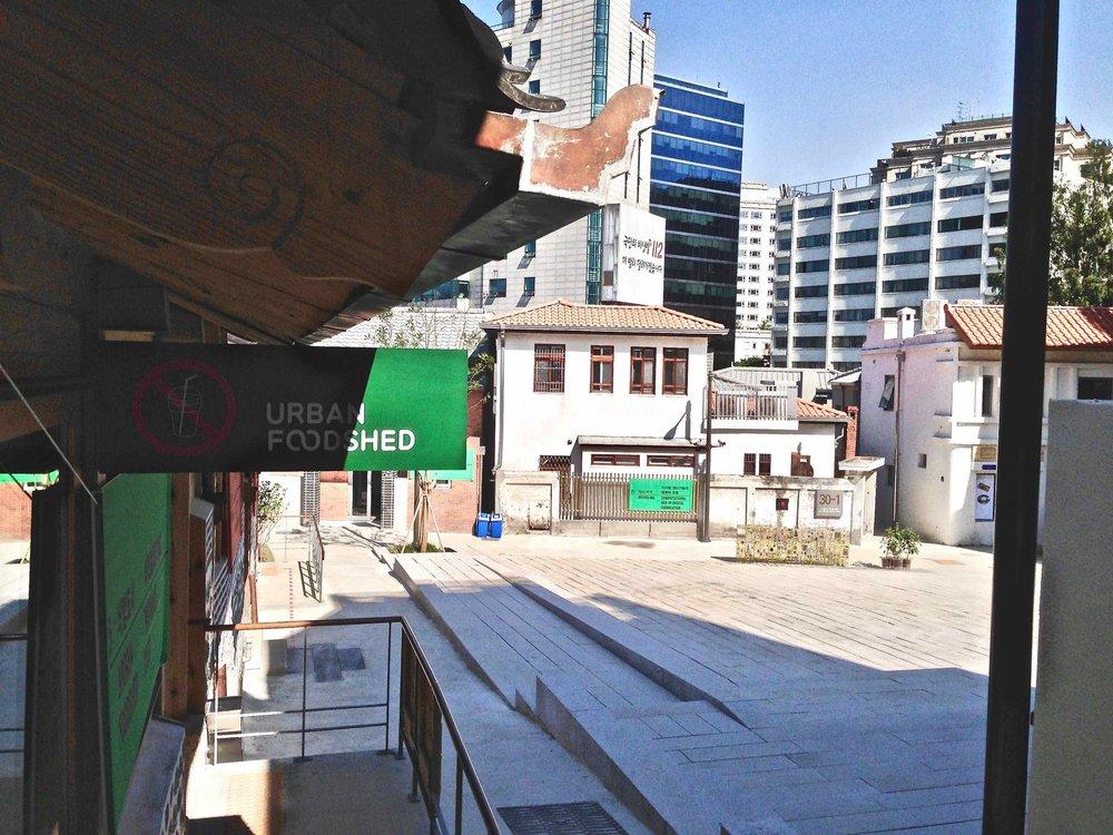 Urban Foodshed:melina Seoul Biennale.jpg