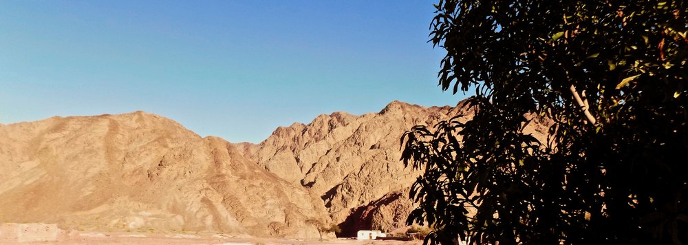 View of the mountains of the South Sinai, farm of  Sheik Awad , El Legabe Wadi, 2017