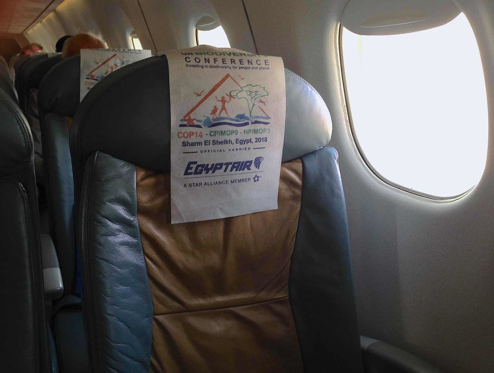 Cop on Egypt Air.jpg