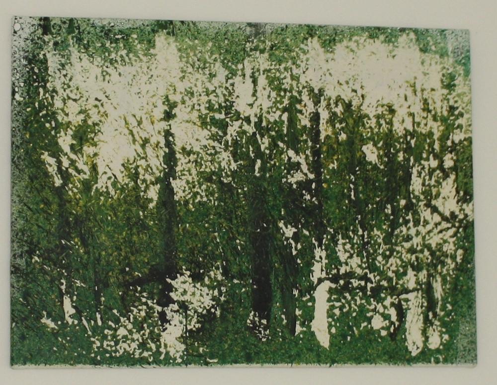 28. Petr Pastrňák   Zelený les   2012, akryl, plátno, 55 x 75 cm