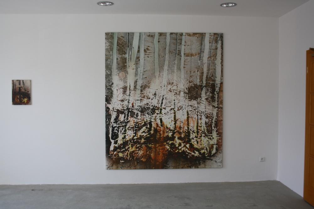 30. Petr Pastrňák   ze série Hořící lesy   2009, 200 x 190 cm